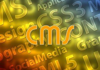 <B>CMS</B>